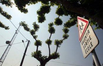 Cette antenne relais est située à quelques centaines de mètres de l'école et du collège de Rignac./Photo DDM.