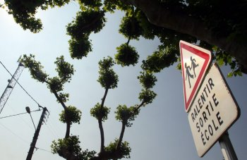 L'antenne relais, située le long de la route de Rodez, est voisine d'un supermarché et des établissements scolaires du village. Une proximité que dénonce le collectif, au nom du principe de précaution./Photo DDM, archives.