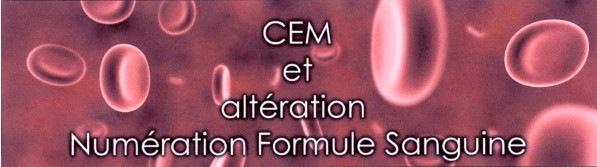 CEM et altération Numération Formule Sanguine