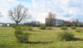 L'antenne prévue sera visible, à proximité du collège./ Photo DDM.L.B