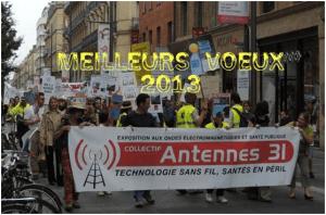 A tous les visiteurs; associations; lanceurs d'alerte; défenseurs de la santé publique: Antennes 31 vous souhaite une bonne et heureuse année 2013